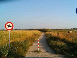 Strandweg-Ferienwohnung-sylt-günstige-Ferienwohnung www.sylter-deichwiesen.de